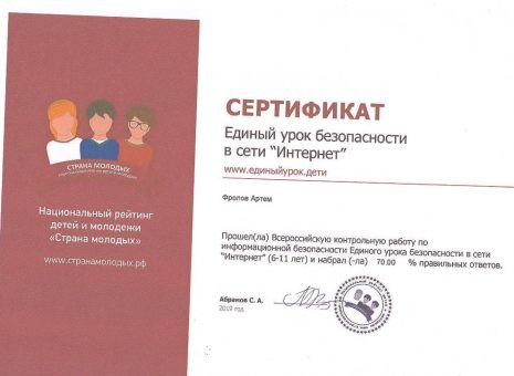 Сертификат Фролова Артема