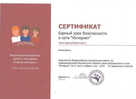 Сертификат Волкова Дениса